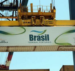 Tecnologia portuária: BTP conclui migração ao Terminal OPUS, seu novo sistema operacional